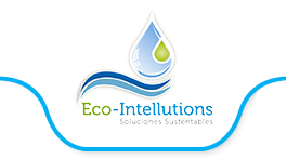 Eco Intellutions